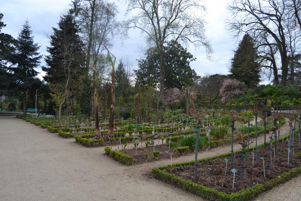 Photo des jardins
