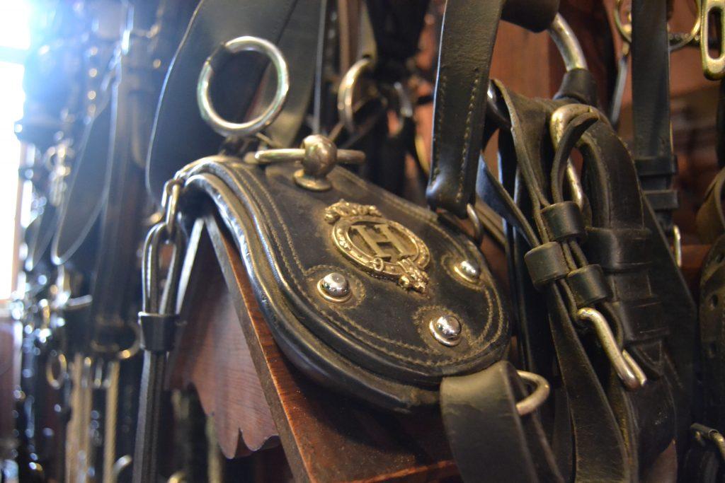 Photo de pièces d'harnachement avec l'emblème du haras d'Hennebont
